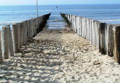 beach of Zeeland