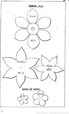 La Fleuriste des salons. [Par Mme L. de Laëre.]                                                                                                                                                                                 Plus