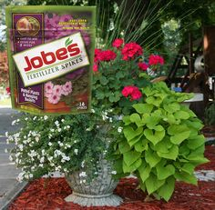 Convenient and easy-to-use, these flowering plant fertilizer spikes provide nutrition for up to 8 weeks! Works for all hanging basket and container flowers.