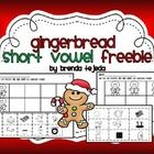 Here is an adorable, fun way to reinforce short vowels with your little ones! Includes:black and white pictures for sorting2 recording sheets wi...