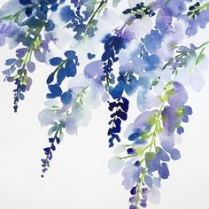 """1,774 Likes, 44 Comments - Yao Cheng (@yaochengdesign) on Instagram: """"Moment. In the throws this week of new greeting cards! #workinprogress #watercolor #wisteria…"""""""