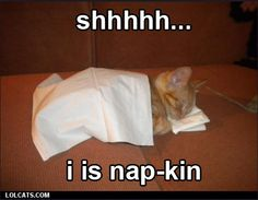 shhhh... I is nap-kin - LOLCats