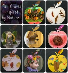 Fall Crafts Inspired by Nature...