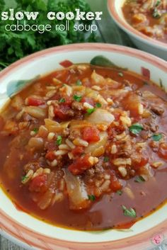 SlowCooker Crockpot Cabbage Roll Soup Recipe
