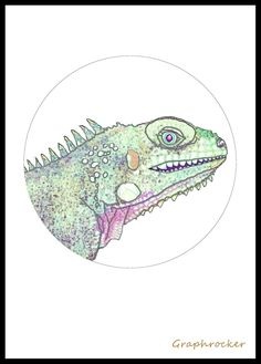 Iguana by Graphrocker