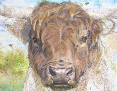 Detail of 'Highland Bull' Watercolour Mijello_Mission Gold Class and Ink-pen on Saunders Waterford by St Cuthberts Mill, 48 x 38 cm St Cuthbert, Gold Class, Cow, My Arts, Watercolor, Artist, Petra, Animals, Detail
