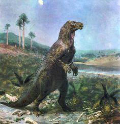 Iguanodon.jpg 961×1000 pixels