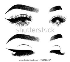 Hand-drawn woman's sexy luxurious eye with perfectly shaped eyebrows and full lashes. Idea for business visit card, typography vector.Perfect salon look. Diy Eyebrows Makeup, Eyebrow Makeup Products, Best Eyebrow Makeup, Sexy Makeup, Makeup Looks, Eyebrow Tips, Eyebrow Pencil, How To Draw Eyelashes, Eyelashes Drawing