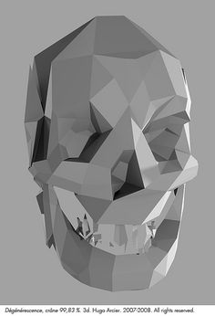 """HUGO ARCIER """"4. Dégénérescence. Crane 99.83%"""" by Hugo Arcier, via Flickr"""
