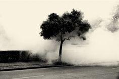 Jing Huang – 63 фотографии