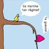 Images Régime Images drôles Dessin humoristique sur Humour.com