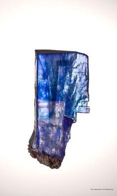 Halite from Intrepid Potash Mine, New Mexico, USA x 40 x 18 mm © Photo :Joe Budd Minerals And Gemstones, Crystals Minerals, Rocks And Minerals, Stones And Crystals, Crystal Castle, Mineral Stone, Rocks And Gems, Small Cabinet, Geology