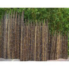Cloture bambou noir : brise-vue Bambouland en bambou naturel noir Outdoor Wall Panels, Outdoor Blinds, Outdoor Walls, Garden Screening, Interior Design Living Room, Fence, Terrazzo, Natural, Planters