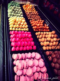 French macaroons in Paris, France