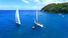 For sailing, sand, sea and spas, head to BodyHoliday Saint Lucia Beach Workouts, Saint Lucia, Best Beer, Olympians, Spas, Caribbean, Travel Inspiration, Sailing, Saints