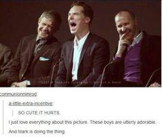 Martin Freeman, Benedict Cumberbatch, and Mark Gatiss (Sherlock) Sherlock Holmes, Sherlock Cast, Sherlock Fandom, Sherlock John, Moriarty, Martin Freeman, Johnlock, Benedict And Martin, Mark Gatiss