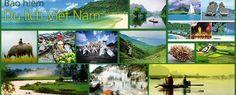 Bảo hiểm du lịch trong nước Việt Nam - Bảo hiểm nội địa