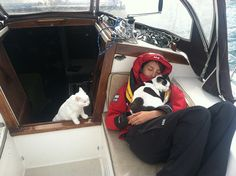 Sailing around the world on a yacht with cats!