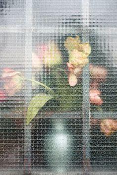 2012-2013 Selection* (New) - Jennilee Marigomen