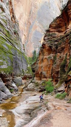 The essential guide to all 59 U.S. national parks                              …