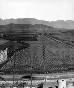 East LA in 1921 (I can't believe how fast L.A. has grown! This is ALL city now as far as the eye can see!!!)