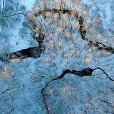 Ice-scapes from the air turn nature into a painting - environment - 14 January 2014 - New Scientist