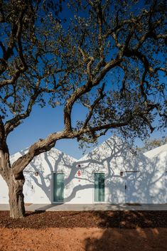 Gallery - Sobreiras – Alentejo Country Hotel / FAT - Future Architecture Thinking - 14