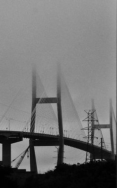 Savannah Bridge  by GlassEyeBob