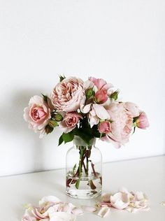 Pretty pale blush pink roses in a glass vase. Bouquet of pink roses.