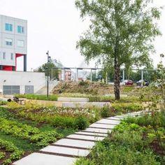 University Hospital Brussels by Omgeving « Landscape Architecture Works   Landezine
