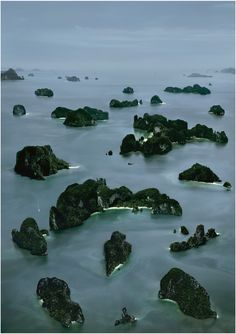 Andreas Gursky James Bond Island III, 2007 I really enjoy this photo because of the viewpoint it shows.  This elevated view is one you would normally never be able to see, and it shows the large scale of the islands.  However, while showing the expanse of the islands, this photo also makes them seem small.