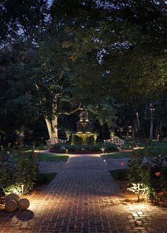 Specialty Landscape Lighting.  I would probably have to use solar lights and since there is not any sun back in there, I would be moving them every night and morning.  It would be worth it though
