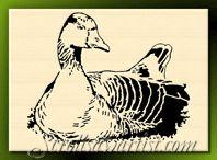 Scroll Saw Patterns :: Birds -