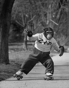 Me at the roller rink the last two weekends with my daughter . . . should I make it three? #monkey, #rollerskates