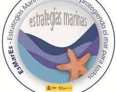 El Museo Alborania-Aula del Mar de Málaga ha acogido la presentación de la Estrategia Marina correspondiente a la demarcación marina del Estrecho y Alborán  Desde mayo se han celebrado talleres, en Tenerife, Vigo y Cádiz que junto al actual de Málaga y el próximo a celebrar en Valencia, corresponden a cada una de las cinco demarcaciones marinas españolas  Las Estrategias Marinas son la herramienta de referencia para alcanzar y mantener el buen estado ambiental del medio marino en 2020