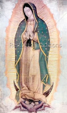 Picture of Original Virgin Mary Guadalupe Painting which was revealed by Indian Peasant Juan Diego in 1531 to Catholic Bishop. New Shrine of the Guadalupe, Mexico City Mexico stock photo, images and stock photography. Catholic Bishops, Catholic Art, Religious Art, Catholic Memes, Religious Tattoos, Religious Images, Roman Catholic, Blessed Mother Mary, Blessed Virgin Mary