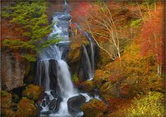 nikko national park - Google Search