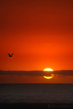 Live there for several years - loved it. Miss you, sunset at Venice Beach,California!