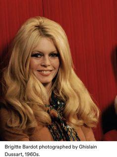 for those who admire Brigitte Bardot's style. Bridgitte Bardot, Julia Stiles, Wedding Hairstyles, Wigs, Long Hair Styles, Celebrities, Sexy, Beauty, Beautiful