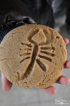 Easy Peanut Butter Fossil Cookies | Recipe - Michelle's Party Plan-It