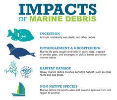 https://marinedebrisblog.files.wordpress.com/2015/09/mb0511151_marine-debri-poster_v11.png