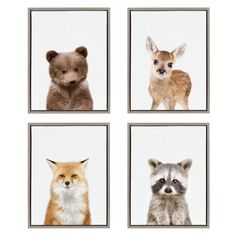 Kate & Laurel Sylvie Baby Racoon Animal Print Portrait By Amy Peterson Framed Wall Canvas Gray Canvas Frame, Canvas Wall Art, Canvas Prints, Baby Racoon, Mothers Day Drawings, Baby Deer, Baby Boy, Colorful Wall Art, Wrapped Canvas