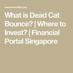 What is Dead Cat Bounce? | Where to Invest? | Financial Portal Singapore