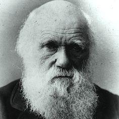 """PAZZO GIGLIO: """"Abitare il corpo"""".  Citazione di Darwin. La percezione del """"corpo che parte"""" nel percorso caratterizzato dal disturbo bipolare.  La mente pensante e la mente intuitiva, creativa. """"Rinascere dall'alto"""" (Gv 3,3)."""