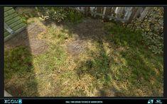 Lawn / Grass / Soil