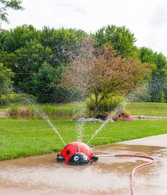 This cute Lady Bug mobile splash pad has 3 nozzles and has about a 15'-20' spray area, depending on your water pressure.  Made of fiberglass and will last for years. Just take it out of the box and hook your garden hose up to her and walaa instant splash pad. #splashpad #mysplashpad