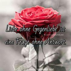 Liebe ohne Gegenliebe... Besucht uns auch auf ---> https://www.herz-und-seele.eu