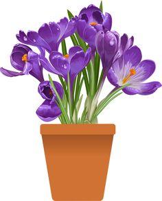 Resultado de imagen de spring flowers in pots flores pintadas imagen relacionada mightylinksfo