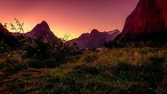 So you want to capture that perfect sunset at an idyllic location but you don't have a tripod or a cable release, what do you do? There are many ways to overcome the lack of gear and use what you have on hand.  A Take A Shot, Your Shot, Milford Sound, Find Objects, Shutter Speed, Beautiful Sunset, How To Take Photos, Tripod, Monument Valley