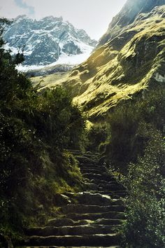 Camino del Inca - Machu Pichu.   Traveling is a great form of learning. I try to visit new places as much as possible.